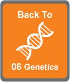 Back to Genetics